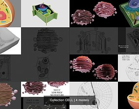 Collection CELL 3D