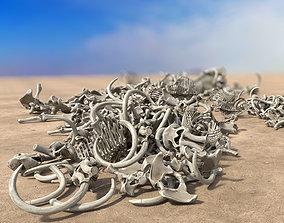 3D model Bone Piles Collection