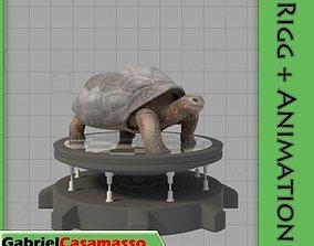 3D Galapagos-Tortoise