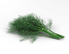 3D The Dill