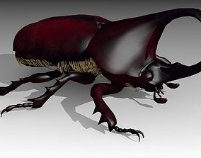 Rhinoceros Beetle 3D model animated