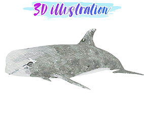 Low Poly Risso Dolphin Illustration Animated - 3D model 1