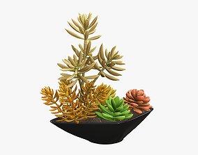 3D Potted plant decorative 06