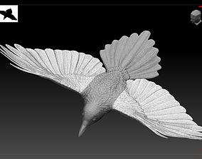 Magpie 3D print model