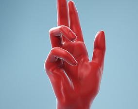 Holistic Gesture Realistic Hand Model 11