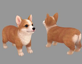 3D asset Cartoon pet puppy - Corgi - baby dog