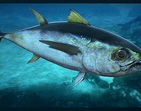 Tuna Fish 3D asset