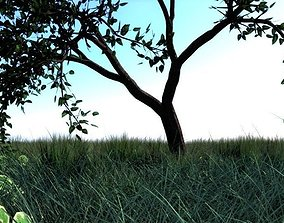 3D asset High quality animated poly tree