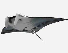 Giant oceanic manta ray 3D asset