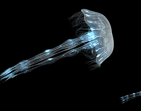animated Procedural Jellyfish Animated 3D model