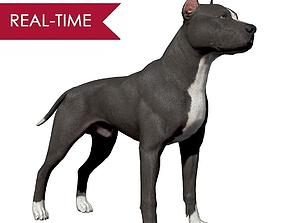 3D model game-ready Pitbull Real-Time