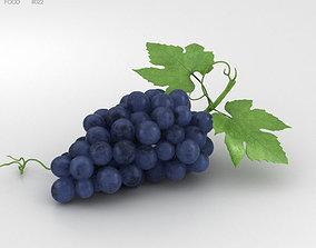 vine Grapes 3D