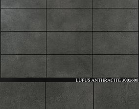 3D model Yurtbay Seramik Lupus Anthracite 300x600