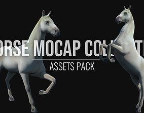Horse Mocap Collection 3D asset