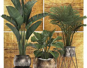 3D model Decorative plants in flower pots for 2