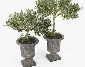 Crawfordsland Metal Pot Planter 01 3D