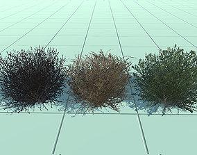 low-poly bush 3D asset