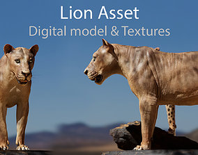 Lion Asset - Digital Model and Textures realtime