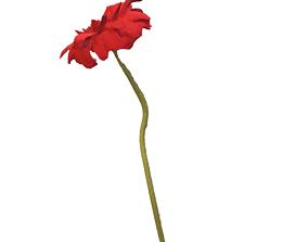 3D model Fw3 - Chrysantemum Amaranth