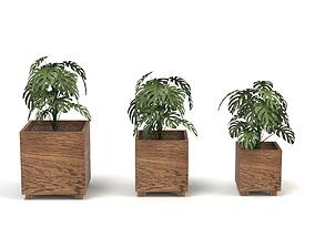 Senetsio Pot 3D model