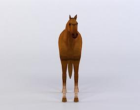 HORSES 3D MODEL VR / AR ready