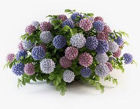Hydrangea flowers 3D bouquet