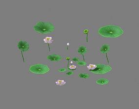 3D model Lake - Lotus 01