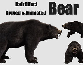 bear grizzly brown bear black 3D asset animated