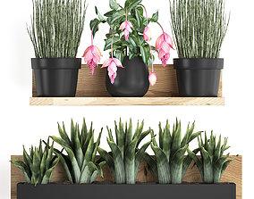 Plant set wall decor vertical garden 404 3D model