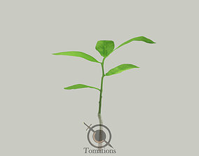 3D model Sprout filmic