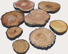 3D model Wood Log Slices