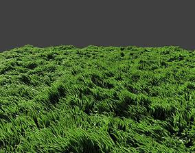 Free Grass 3D Models | CGTrader