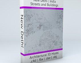 New Delhi Streets and Buildings 3D model