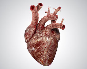 Heart Bloody Rigged Animated PBR 3D asset