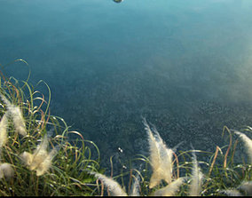 3D Lakeside park scenery 002