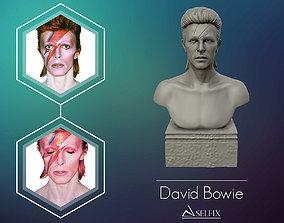 David Bowie 3D Sculpture Model Ready to 3D print