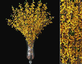 Forsythia 03 3D model