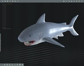 Shark 3D printable model ocean