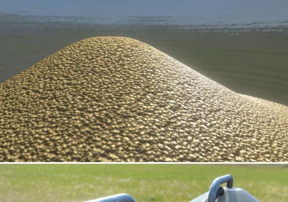 Corn Silos (WIP-1)