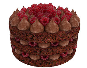 Raspberry chocolate cake 3D