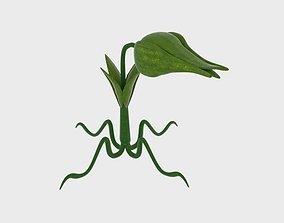 Cartoon Munch Plant 3D asset