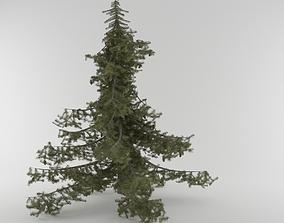 Pine Tree Pack 5 models 3D