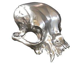 3D printable model 3D asset Cranium Charm Bulldog