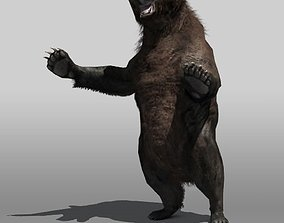 3D asset Grizzly Bear