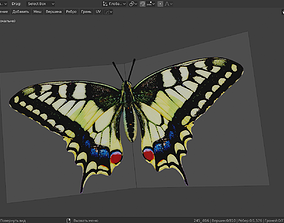 Mahaon butterfly animation 3D asset animated