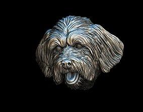 3D print model Lhasa Apso dog head