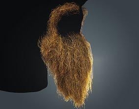 3D model Beard RealTime 16 Version 2 Low Poly