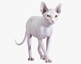 3D model Sphynx Cat White Animated