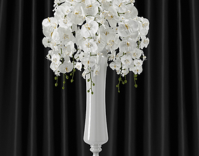 Orchid -phalaenopsis bouquet tree 3D