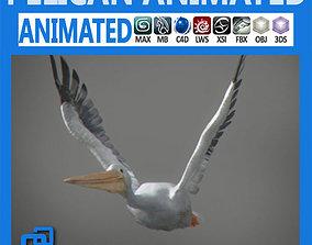 Animated Pelican 3D model